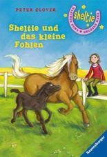 Sheltie und das kleine Fohlen