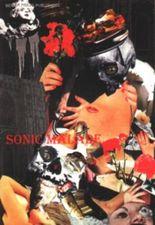 Sonic malade (Book on Demand)