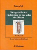 Sonographie und Endoskopie an der Zitze des Rindes