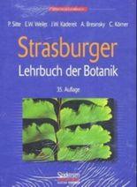 Strasburger-Paket: Lehrbuch der Botanik und Studienhilfe-CD-ROM