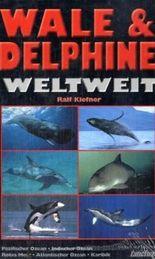 Wale & Delphine weltweit