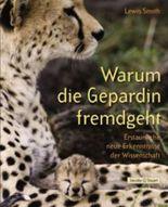Warum die Gepardin fremdgeht