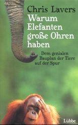 Warum Elefanten große Ohren haben