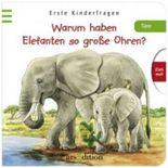 Warum haben Elefanten so große Ohren?