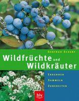 Wildfrüchte und Wildkräuter