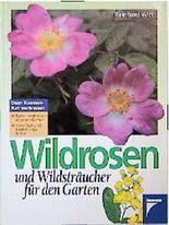 Wildrosen und Wildsträucher für den Garten