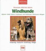 Windhunde - Afghane/Saluki/Barsoi/Greyhound/Irish Wolfhound/Deerhound/