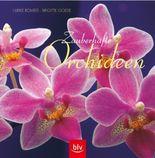 Zauberhafte Orchideen