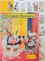 Zehn verspielte Miezekatzen