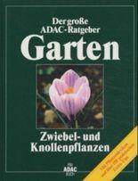 Zwiebelpflanzen und Knollenpflanzen