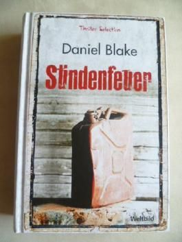 Sündenfieber (Thriller Selection)