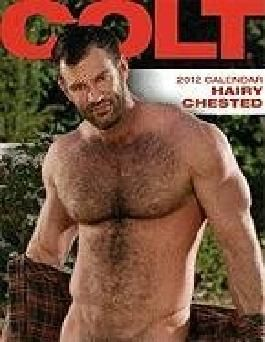 Colt Hairy Chested