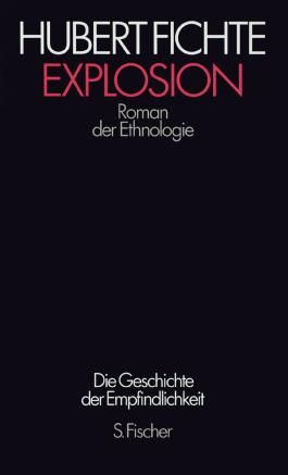 Hubert Fichte, Die Geschichte der Empfindlichkeit / Explosion
