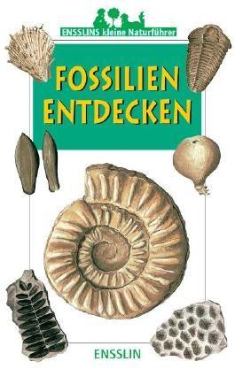 Fossilien Europas