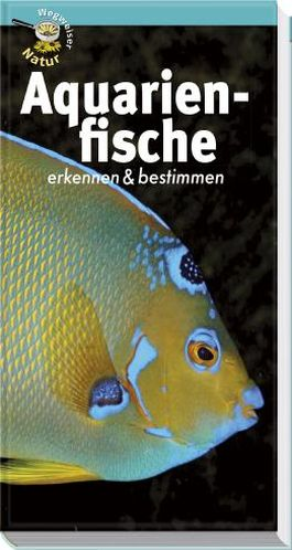 Aquarienfische erkennen & bestimmen