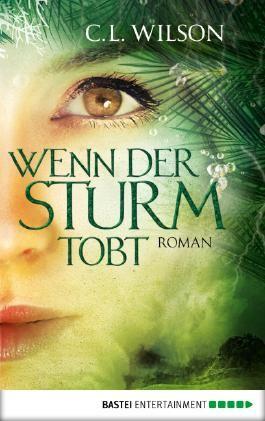 Wenn der Sturm tobt: Roman