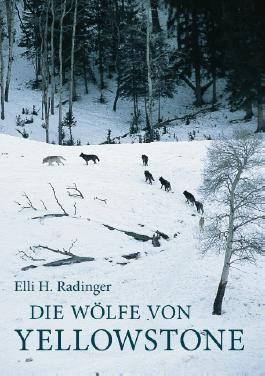 Die Wölfe von Yellowstone