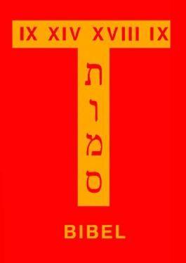 Bibelhandschrift / Bibel II