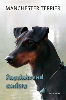 Manchester Terrier - Faszinierend anders
