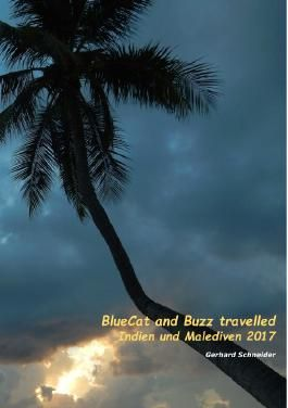 Buzz travelled / BlueCat and Buzz travelled