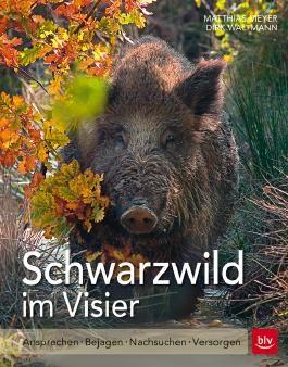 Schwarzwild im Visier