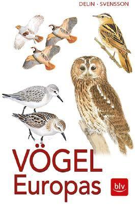 Vögel Europas