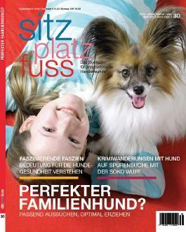 StizPlatzFuss, Ausgabe 30