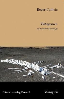 Patagonien und weitere Streifzüge