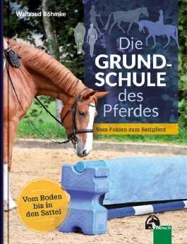 Die Grundschule des Pferdes