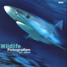 Wildlife Fotografien des Jahres 2001