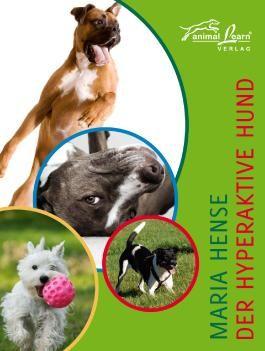 Der hyperaktive Hund
