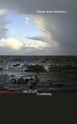 Salzflut