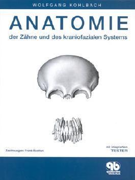 Anatomie der Zähne und des kraniofazialen Systems