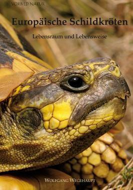 Europäische Schildkröten