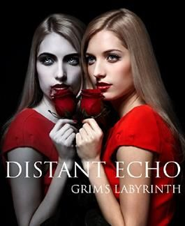 A Distant Echo: Book 1 (Grim's Labyrinth Series)