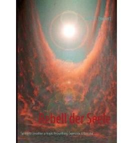[ REBELL DER SEELE (GERMAN) ] BY Englert, Axel W ( Author ) [ 2013 ] Paperback
