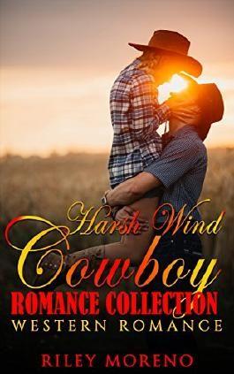 HARSH WINDS: Contemporary Western Romance