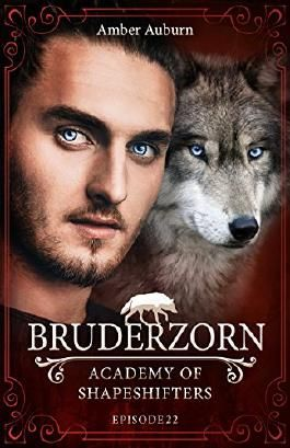 Bruderzorn, Episode 22 - Fantasy-Serie (Academy of Shapeshifters)