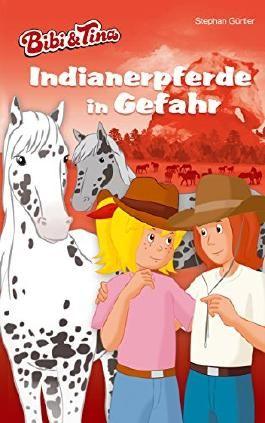 Bibi & Tina - Indianerpferde in Gefahr: Roman