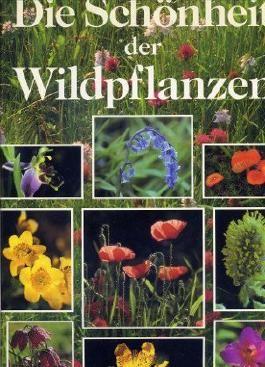 Die Schönheit der Wildpflanzen