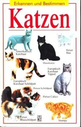 Katzen - Erkennen und bestimmen