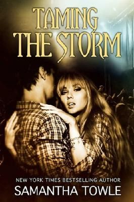 Taming the Storm (The Storm Series)