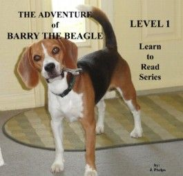 The Adventures of Barry the Beagle