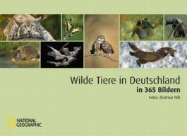 Wilde Tiere in Deutschland in 365 Bildern