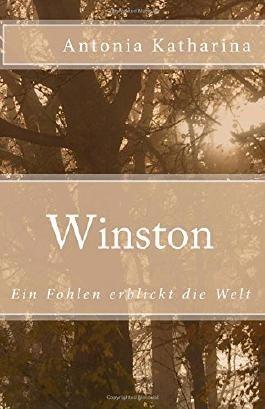 Winston: Ein Fohlen erblickt die Welt