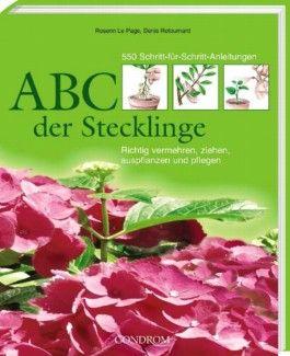 ABC der Stecklinge