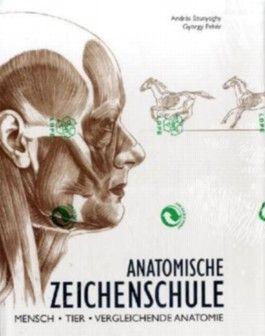 Anatomische Zeichenschule