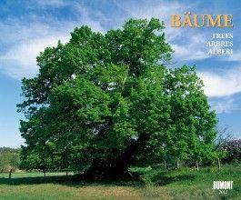Bäume, Fotokunst-Kalender 2012