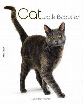 Catwalk Beauties