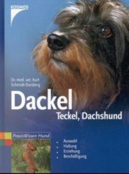 Dackel, Teckel, Dachshund